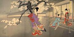 11千代田の大奥 お庭の夜桜 3枚組