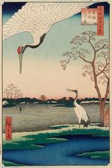 102蓑輪金杉三河しま (冬の部)