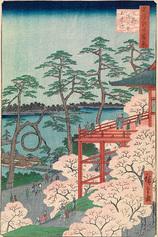 11上野清水堂不忍ノ池 (春の部)