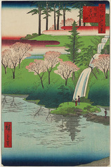 23目黒千代か池 (春の部)