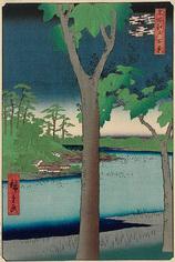 48赤坂桐畑 (夏の部)