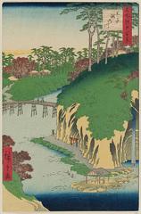 88王子瀧の川 (秋の部)