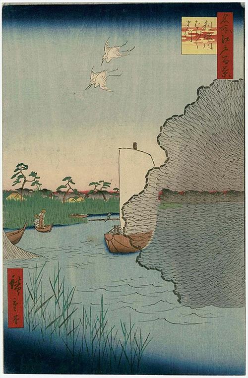 61利根川ばらばらまつ (夏の部)